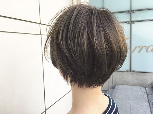 Asian Short Hair Pictures
